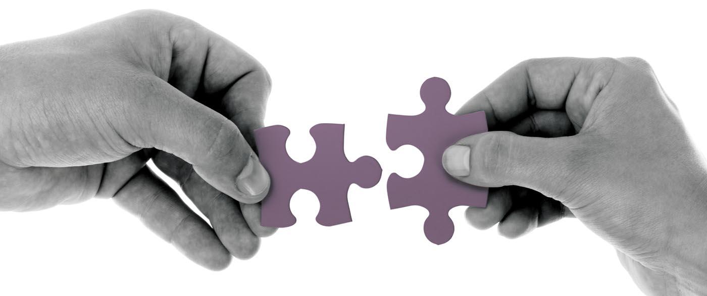 ¿Qué es la fusión empresarial?
